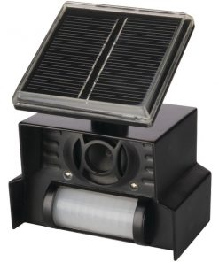 P3 International(R) P7815 Sol-Mate(R) Solar Animal Chaser